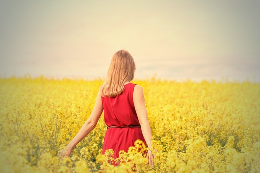 Free stock photo of fashion, person, woman, field