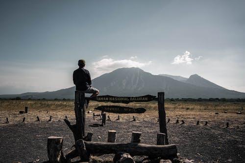 Man in Black Shirt Sitting on Brown Wooden Bench
