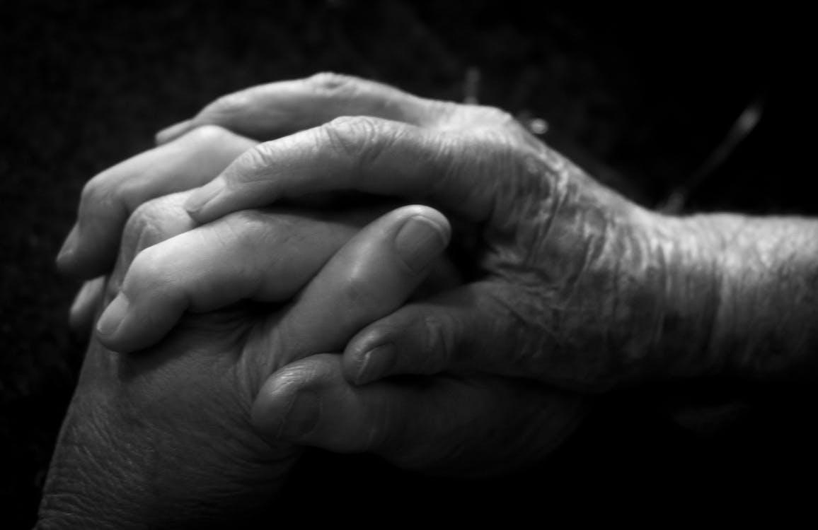 Fotos de stock gratuitas de abuela, adulto, amor