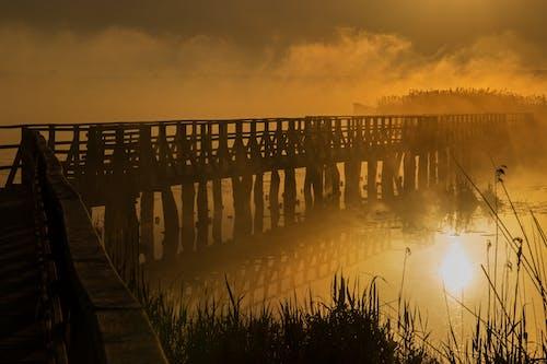 Gratis stockfoto met avond, blikveld, brug, dageraad