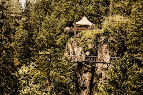 Gratis lagerfoto af arkitektur, bjerg, bro, dagslys