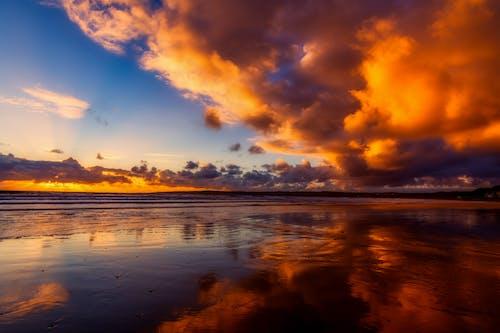 Бесплатное стоковое фото с апельсин, берег, берег моря, вода