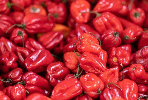 Free stock photo of chili peppers, fresh vegetables, red pepper