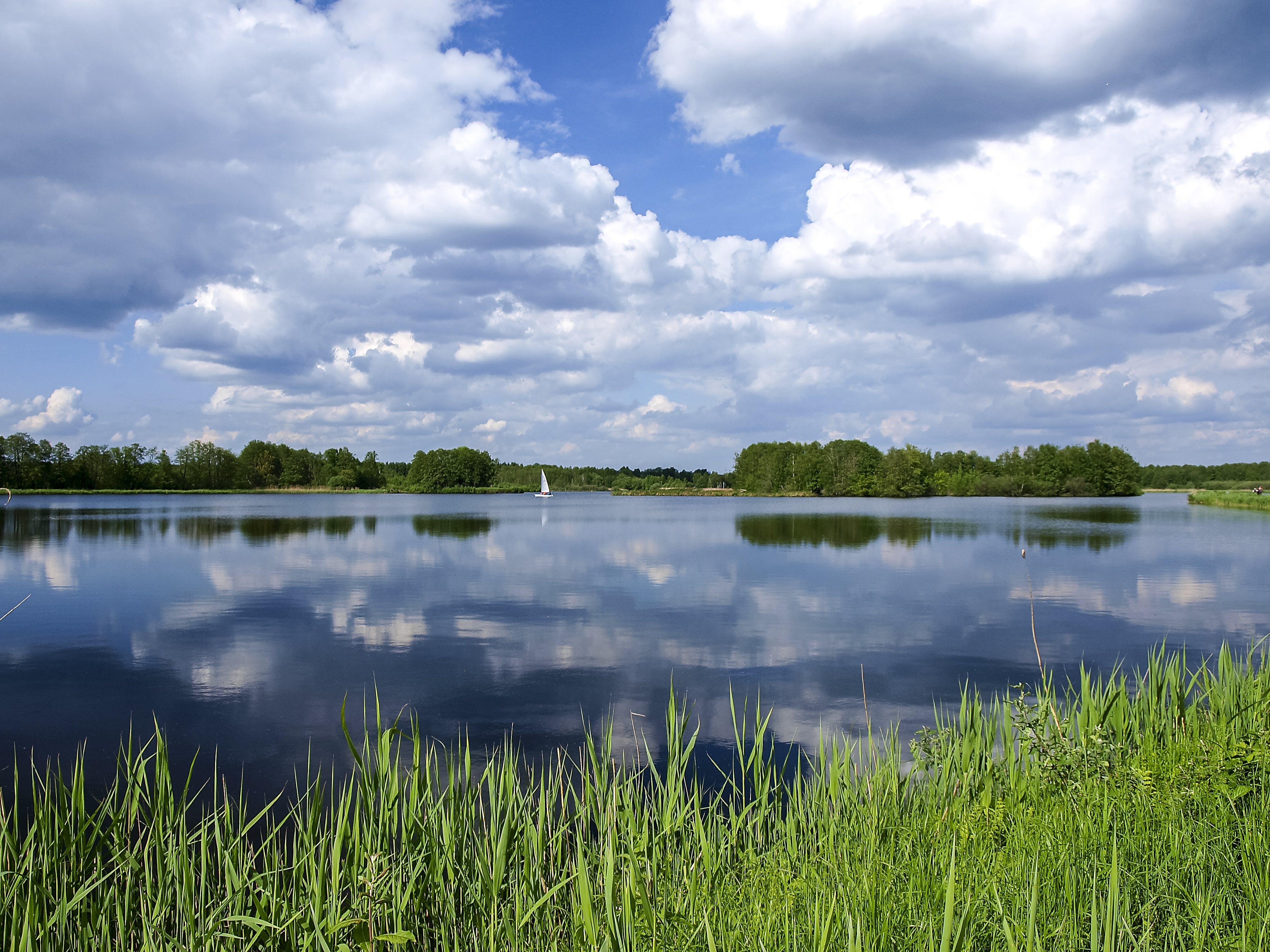 Green Grass Field Near Body of Water