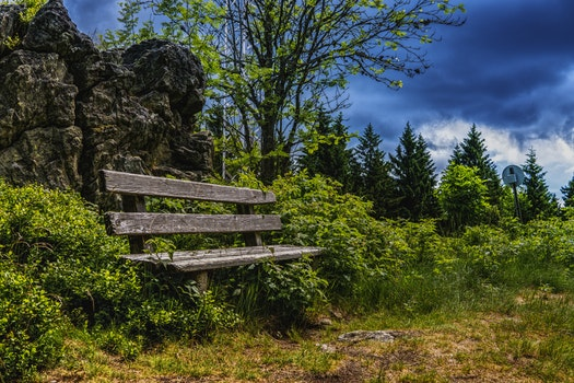 Free stock photo of bench, nature, sky, clouds