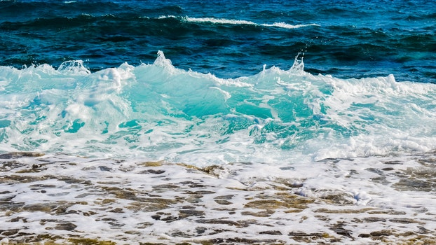 Free stock photo of sea, nature, water, ocean