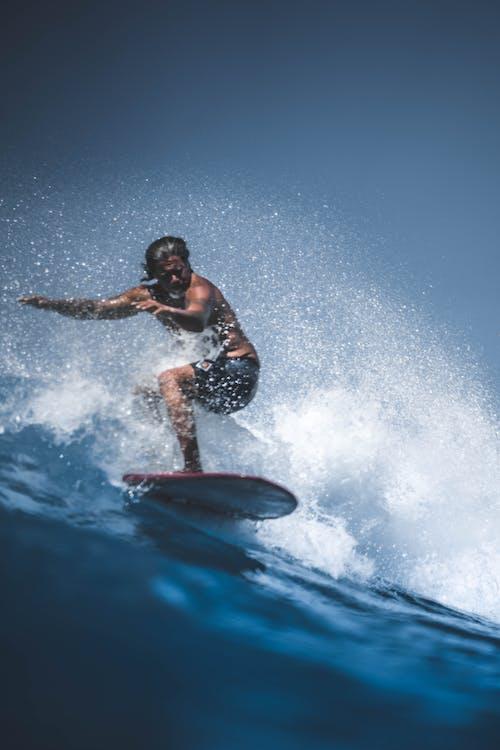 Gratis lagerfoto af bølger, eventyr, hav