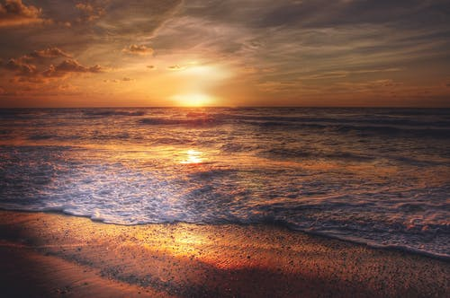 Photography of Beach Line during Golden Hour