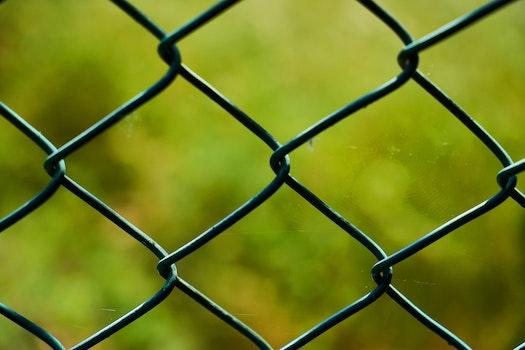 Free stock photo of blur, macro, steel, wire