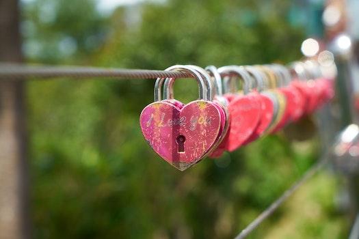 Free stock photo of love, art, romantic, rope