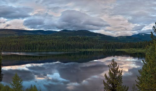 Body of Water With Trees and Mountain As Background Photography