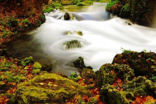 Darmowe zdjęcie z galerii z fotografia przyrodnicza, góra, kaskada, krajobraz