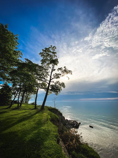 Ilmainen kuvapankkikuva tunnisteilla auringonpurkaus, luonto tausta, pilvet taivaalla, puu