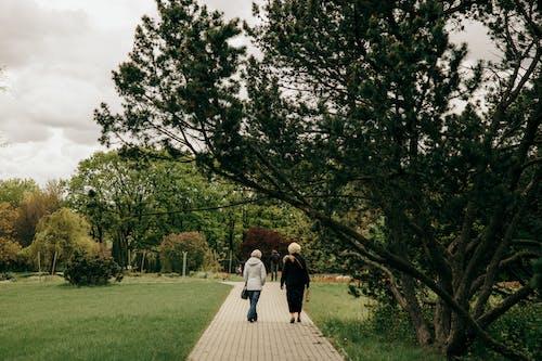 คลังภาพถ่ายฟรี ของ กลางแจ้ง, การแต่งงาน, คน
