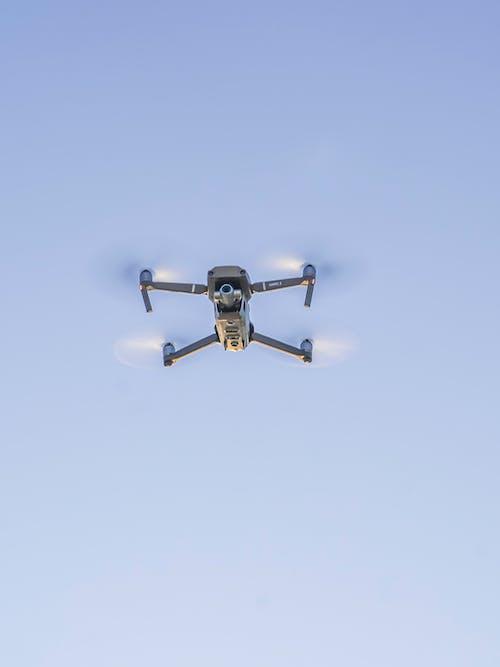 Kostnadsfri bild av aviate, fart, flyg, flygande