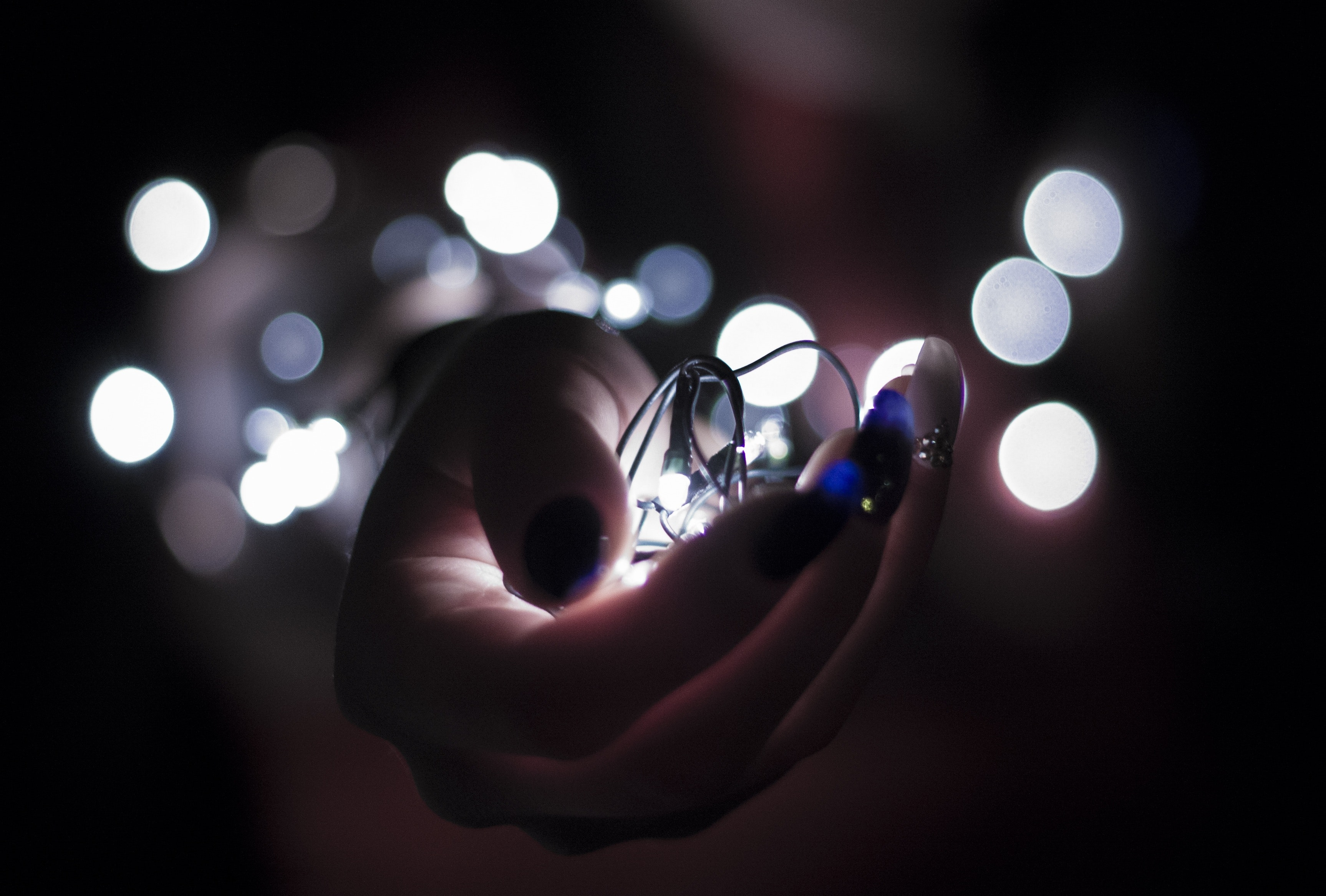 Close Up Photography of Person Holding White String Lights