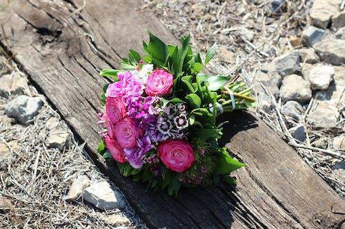 Gratis stockfoto met bloemen, bloemstuk, boeket, boeketje