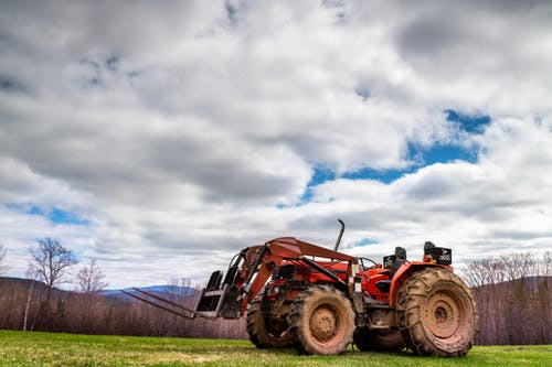 Fotos de stock gratuitas de agricultura, agronomía, al aire libre
