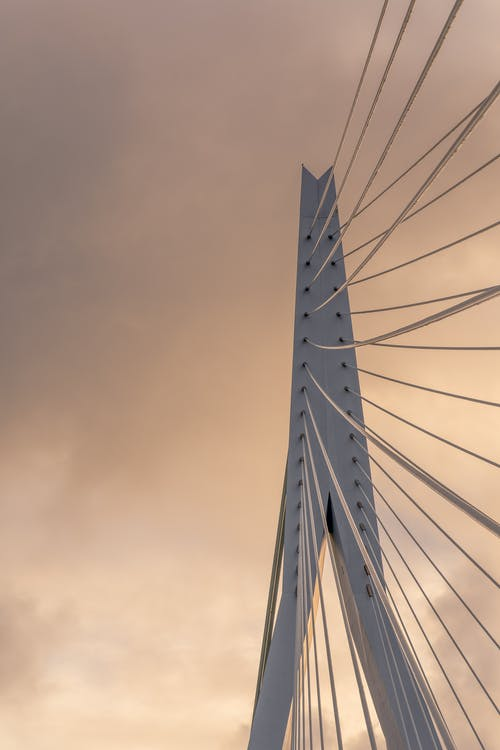 Free stock photo of big city, bridge, cityscape