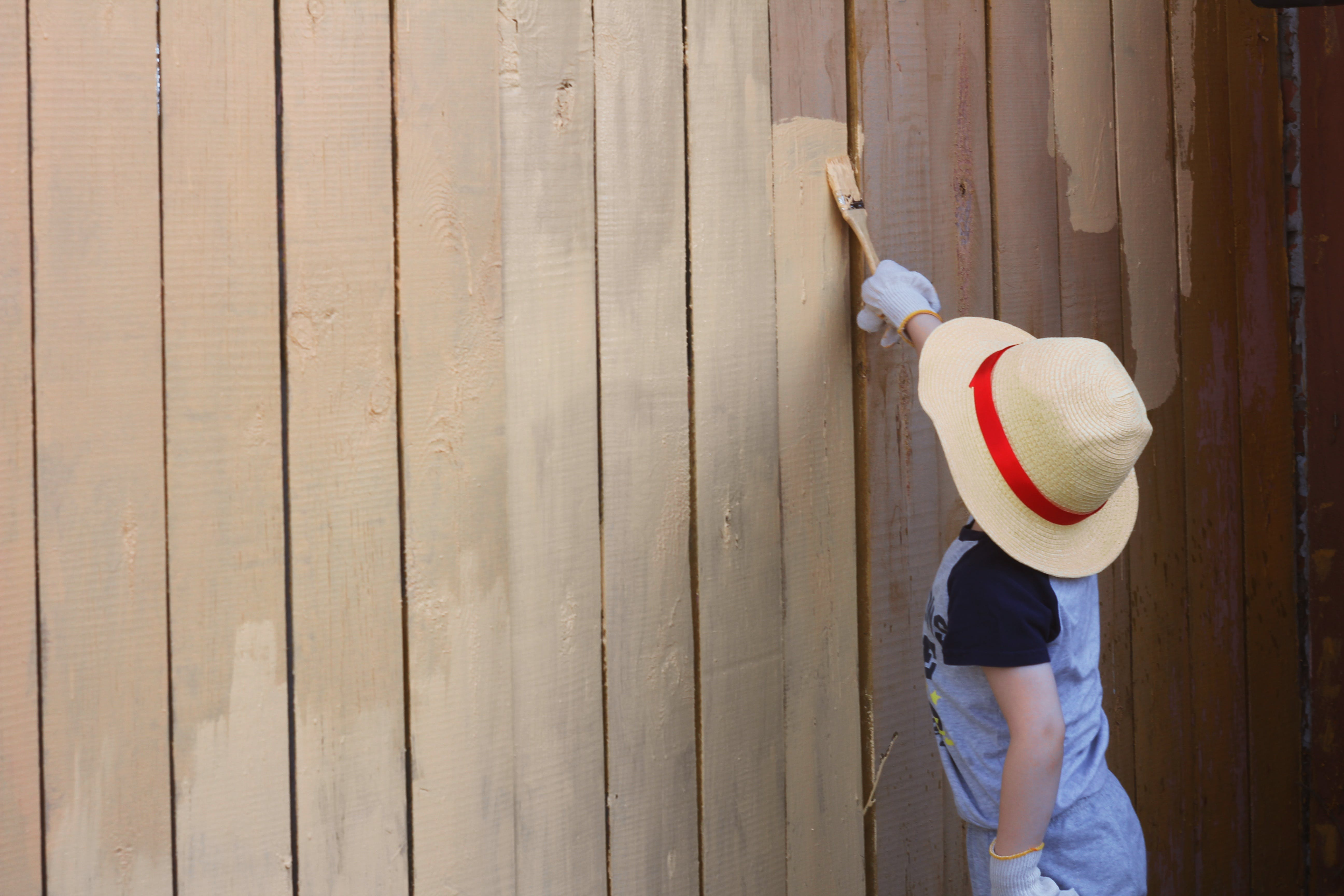 Free stock photo of fence, paint, boy