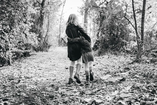 Free stock photo of black-and-white, love, people, forest