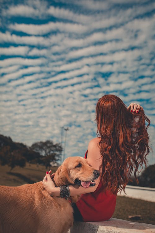 Faceless woman hugging golden retriever