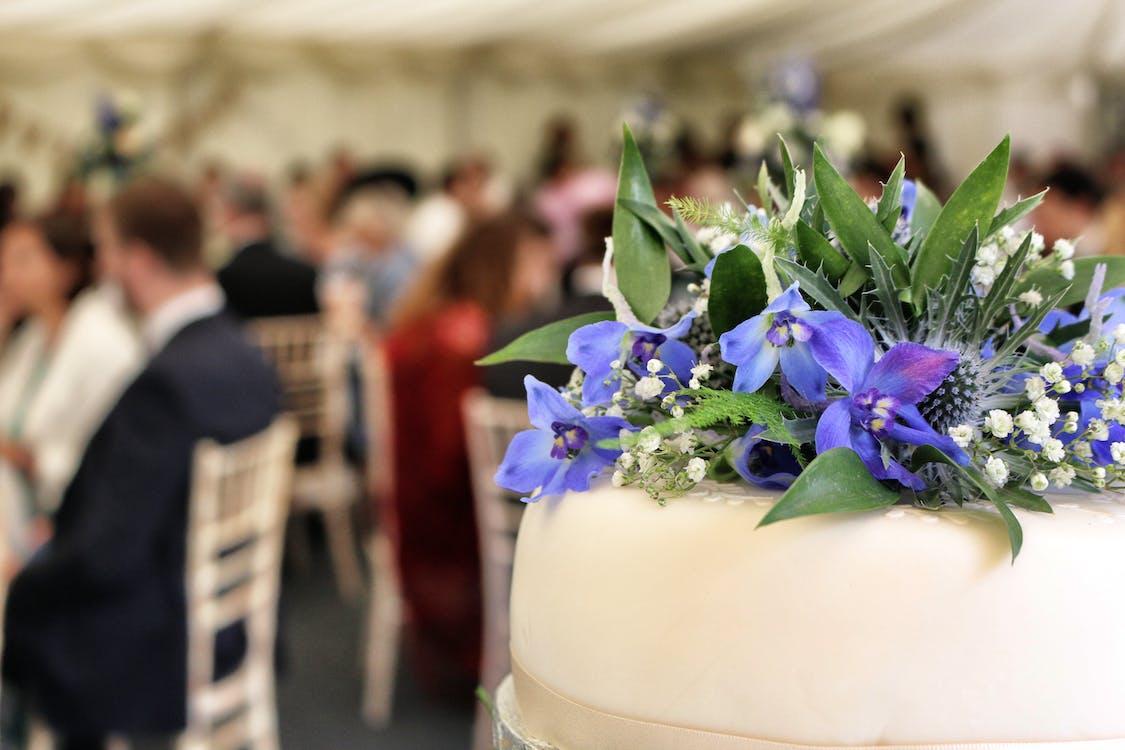 Free stock photo of wedding, wedding cake, wedding party