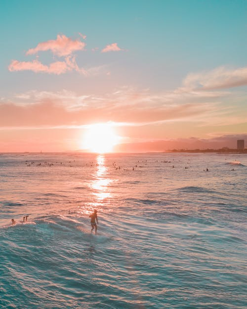 Person in Sea Water during Sunset