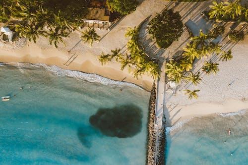 Photos gratuites de bleu, états-unis, hawaï