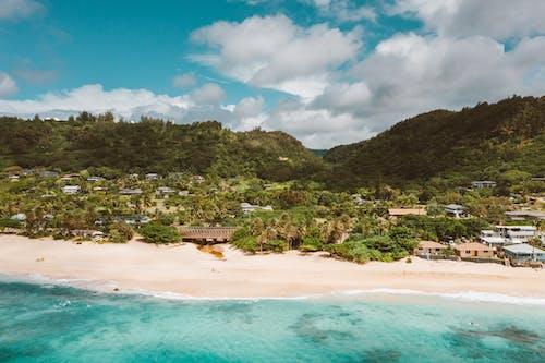 Kostenloses Stock Foto zu blau, hawaii, honolulu