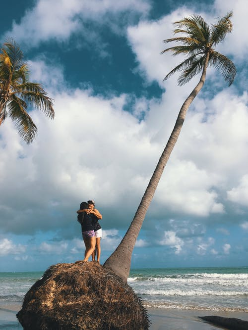 Unrecognizable couple hugging while standing on stone with palm on sandy beach near waving sea in tropical country