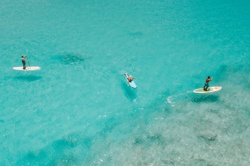 2 Person in White and Brown Wetsuit Surfing on Blue Sea Water