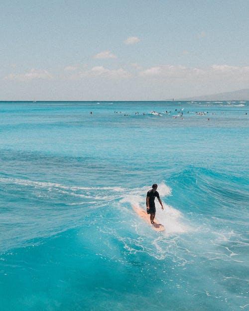 Woman in Black Bikini Surfing on Sea