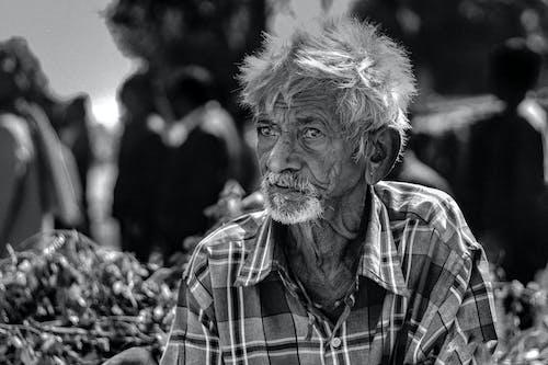 Fotos de stock gratuitas de adulto, anciano, android