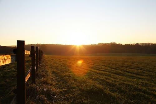 Foto profissional grátis de agriculteur, agricultor, agricultura, área rural