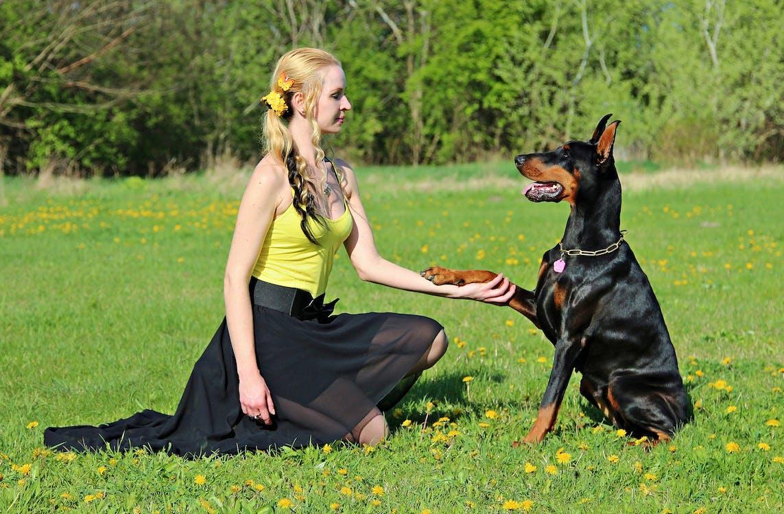 Girl Kneeling While Holding Dog's Paw