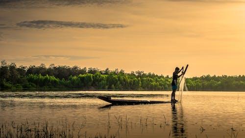 Darmowe zdjęcie z galerii z drzewa, krajobraz, mężczyzna, na zewnątrz