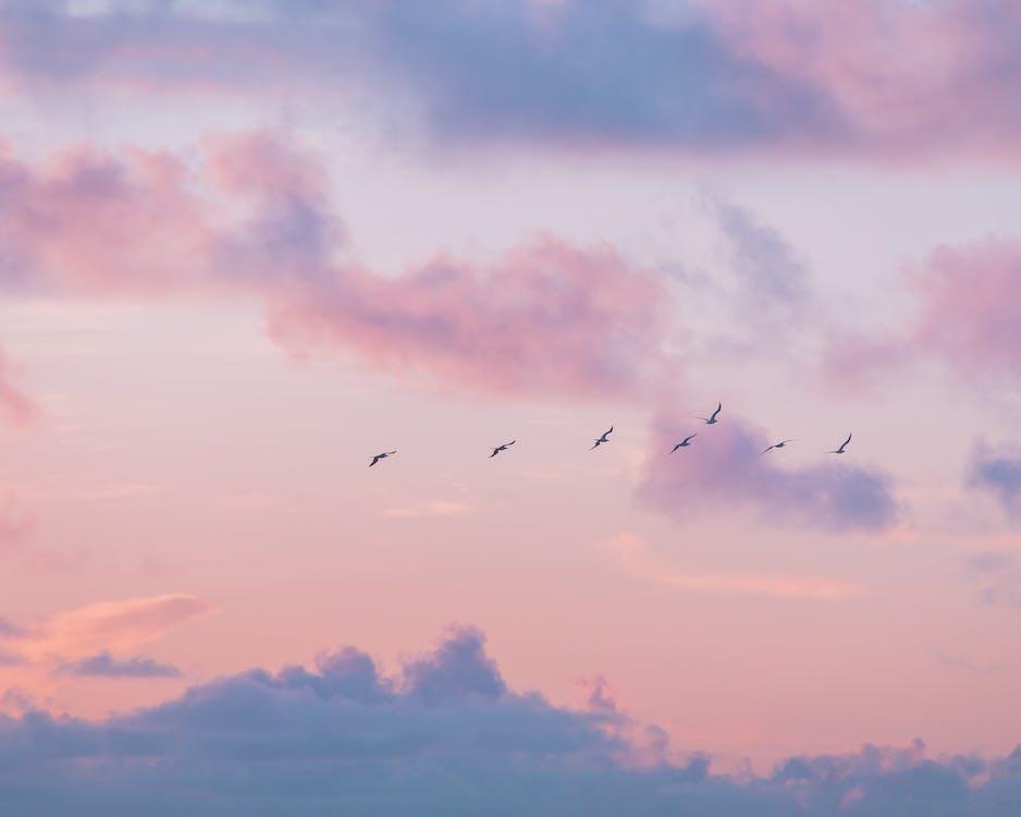 Kostenloses Stock Foto zu hawaii, himmel, oahu