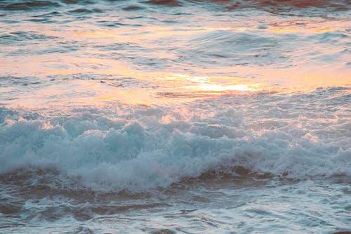 Бесплатное стоковое фото с oahu, волны, гавайи