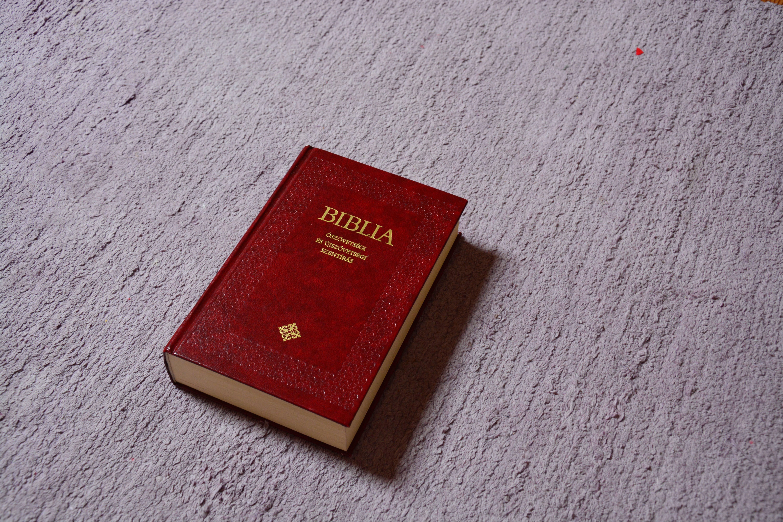 기독교, 성경, 시멘트
