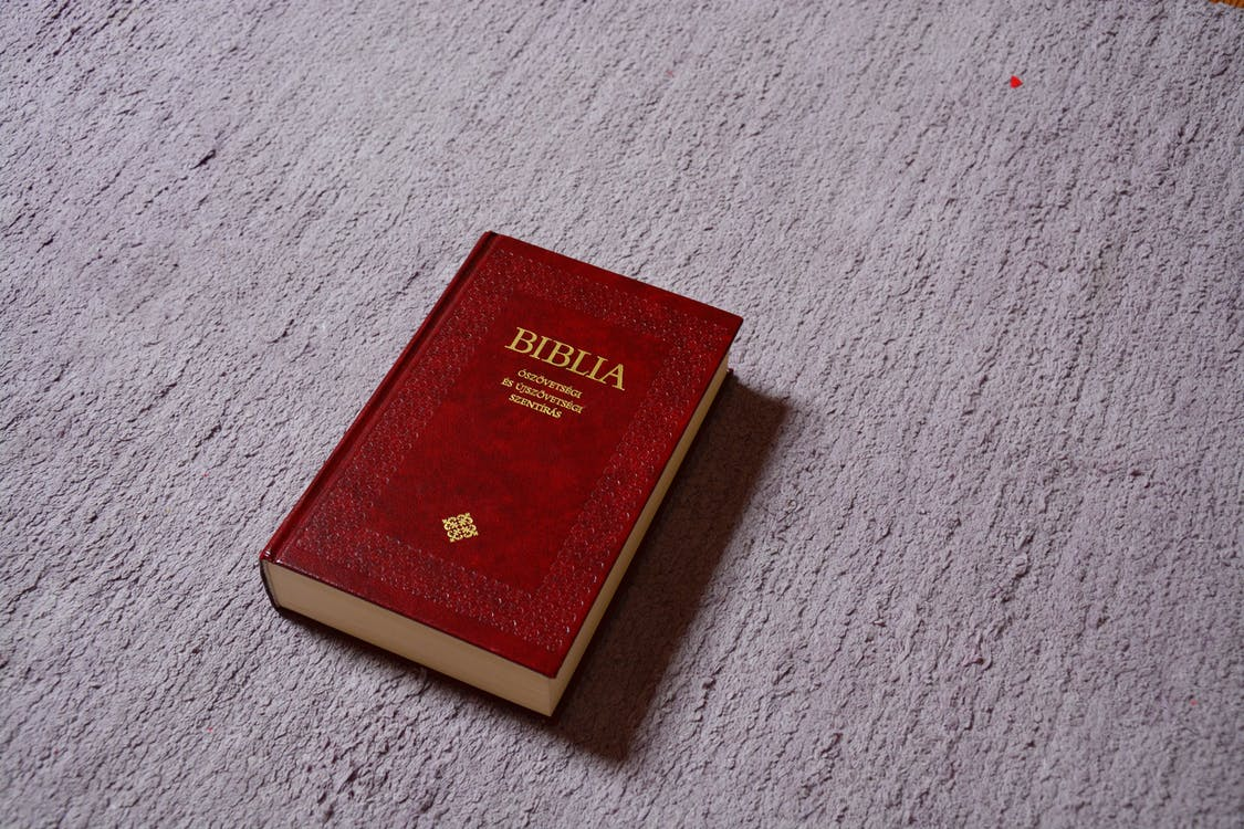 Red Biblia