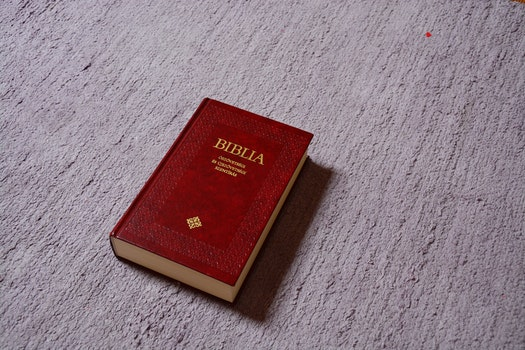 Free stock photo of book, christianity, cement, bible
