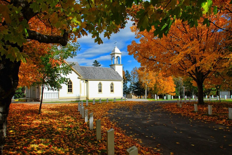 autumn, autumn leaves, church