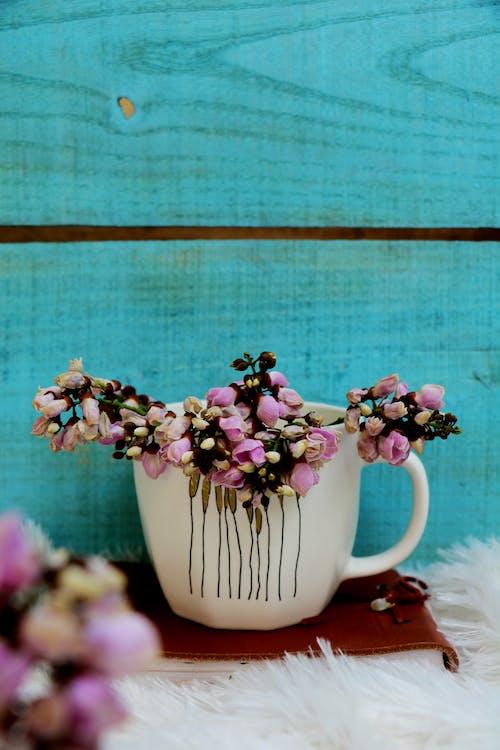 Gratis arkivbilde med aroma, arrangement, blomst