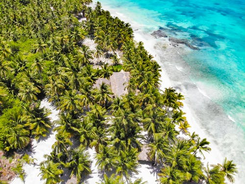 Aerial shot of tropical island with palms and sandy seacoast