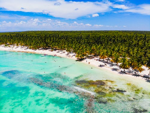 Drone view exotic forested beach with sunbathing and swimming tourists near magnificent blue warm sea on sunny clear weather