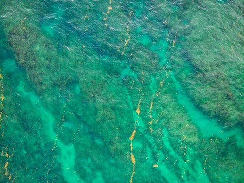 Magnificent green seawater over tropical reef