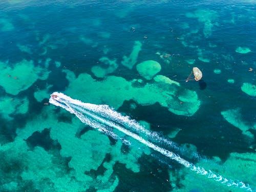 Foto profissional grátis de ação, aéreo, ágil, água