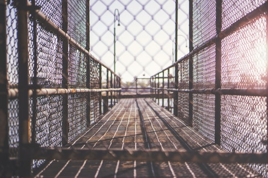 Free stock photo of way, fence, walkway