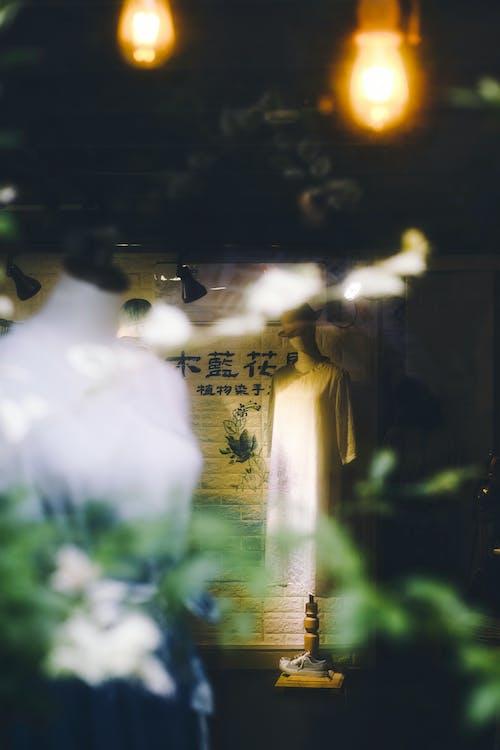 คลังภาพถ่ายฟรี ของ กระจกใส, การขาย, การค้า